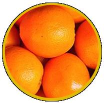 citrus aroma